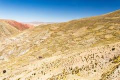 Terrazzi di agricoltura delle montagne della Bolivia Fotografia Stock