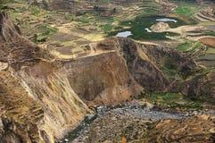 Terrazzi di Inkas Immagine Stock