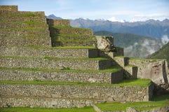 Terrazzi di Machu Picchu Immagini Stock