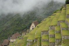 Terrazzi di Machu Pichu Fotografie Stock Libere da Diritti