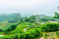 Terrazzi di PA del Sa, Vietnam fotografie stock
