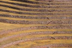 Terrazzi nel complesso di Moray vicino a Maras, Perù fotografia stock libera da diritti
