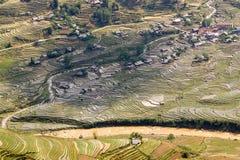 Terrazzi nel PA del Sa, Vietnam del riso Fotografia Stock