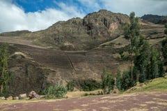 Terrazzi nelle colline del Perù Fotografie Stock