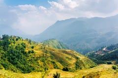 Terrazzi soleggiati del riso agli altopiani di PA del Sa, Vietnam Fotografia Stock