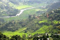Terrazzo che coltiva lungo il fiume della valle di Pokhara Fotografia Stock Libera da Diritti