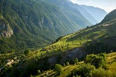 Terrazzo che coltiva nel parco nazionale di Ecrins di estate Hautes-Alpes, alpi francesi, Francia Fotografia Stock