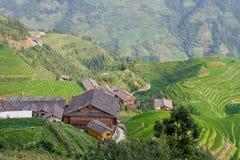 Terrazzo del giacimento del riso di Guilin Fotografie Stock Libere da Diritti