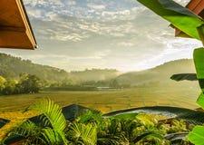 terrazzo del riso dopo il raccolto al nordico della Tailandia Fotografia Stock Libera da Diritti