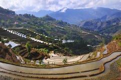Terrazzo della Cina Yunnan Hani Fotografie Stock