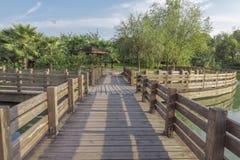 Terrazzo di legno Immagini Stock