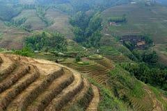 Terrazzo di Longji, il Guangxi, porcellana Fotografia Stock