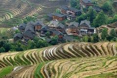 Terrazzo di Longji, il Guangxi, porcellana Immagini Stock