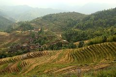 Terrazzo di Longji, il Guangxi, porcellana Fotografia Stock Libera da Diritti