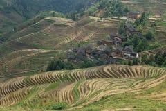 Terrazzo di Longji, il Guangxi, porcellana Immagini Stock Libere da Diritti