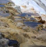Terrazzo di Minerva nel parco nazionale di Yellowstone, U.S.A. fotografie stock
