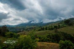 Terrazzo di verdure di agricoltura che coltiva nella collina del villaggio della montagna della foresta con il cielo nuvoloso Immagine Stock