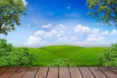 Terrazzo nella natura Fotografie Stock