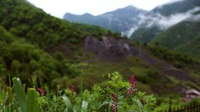 Terre arménienne des montagnes photo stock