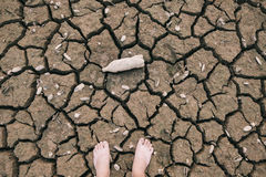 Terre avec sec Image stock