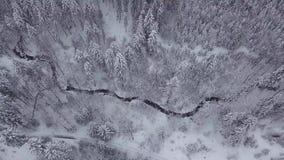 Terre bianche con il legno in neve video d archivio