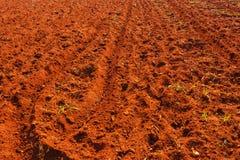 Terre cultivée dans l'Inde photographie stock libre de droits
