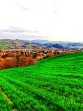 Terre cultivée et jeune herbe verte de ressort sur onduler le terrain montagneux photos libres de droits