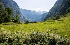 Terre de Berchtesgaden de National-parc Photographie stock