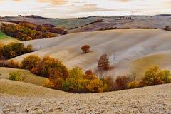 Terre de la Toscane en automne Photographie stock