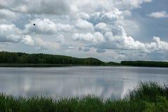 Terre de marais en Saskatchewan, Canada images stock