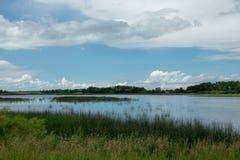 Terre de marais en Saskatchewan, Canada image stock