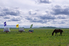 Terre de pâturage de Hulunbuir photographie stock