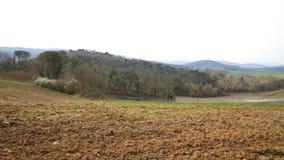 Terre de Plower en Toscane clips vidéos