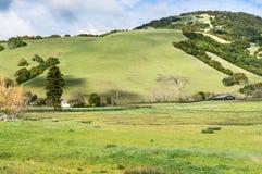 Terre de ranch du comté de Sonoma la Californie Image libre de droits
