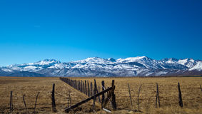 Terre di pascolo in California Fotografie Stock