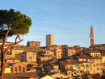 Terre di Siena Fotografia Stock Libera da Diritti