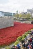 Terre e mari spazzati sangue di rosso Fotografia Stock Libera da Diritti