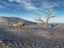 Terre en friche morte d'arbre Photographie stock