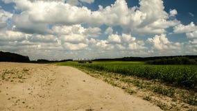 Terre fertile, pas une terre fertile Laps de temps, agroculture avec l'accélération du temps 41 banque de vidéos