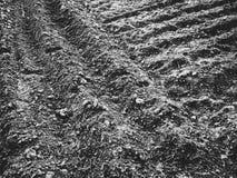 Terre fraîchement labourée Image libre de droits