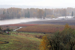 Terre inondée de ferme Photos libres de droits