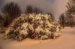 Terre Islande d'hiver Photographie stock