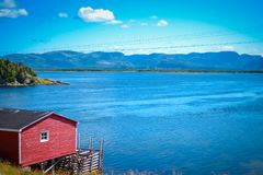 TERRE-NEUVE/CANADA - AOÛT 2014 : ÉTÉ CHEZ TERRE-NEUVE Image stock