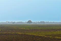 Terre ouverte de ferme avec le ciel bleu à l'arrière-plan photos stock