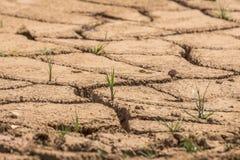 Terre sèche criquée au barrage au Brésil photos stock