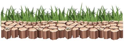 Terre sèche et herbe verte Image stock