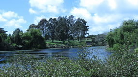 Terre verte de beauté Image stock