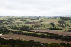 Terreni agricoli fertili - Tasmania nordoccidentale Fotografia Stock Libera da Diritti