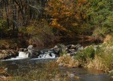 Terreni boscosi in autunno Immagini Stock Libere da Diritti