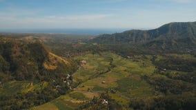 Terreni coltivabili del paesaggio della montagna e villaggio Bali, Indonesia Immagine Stock